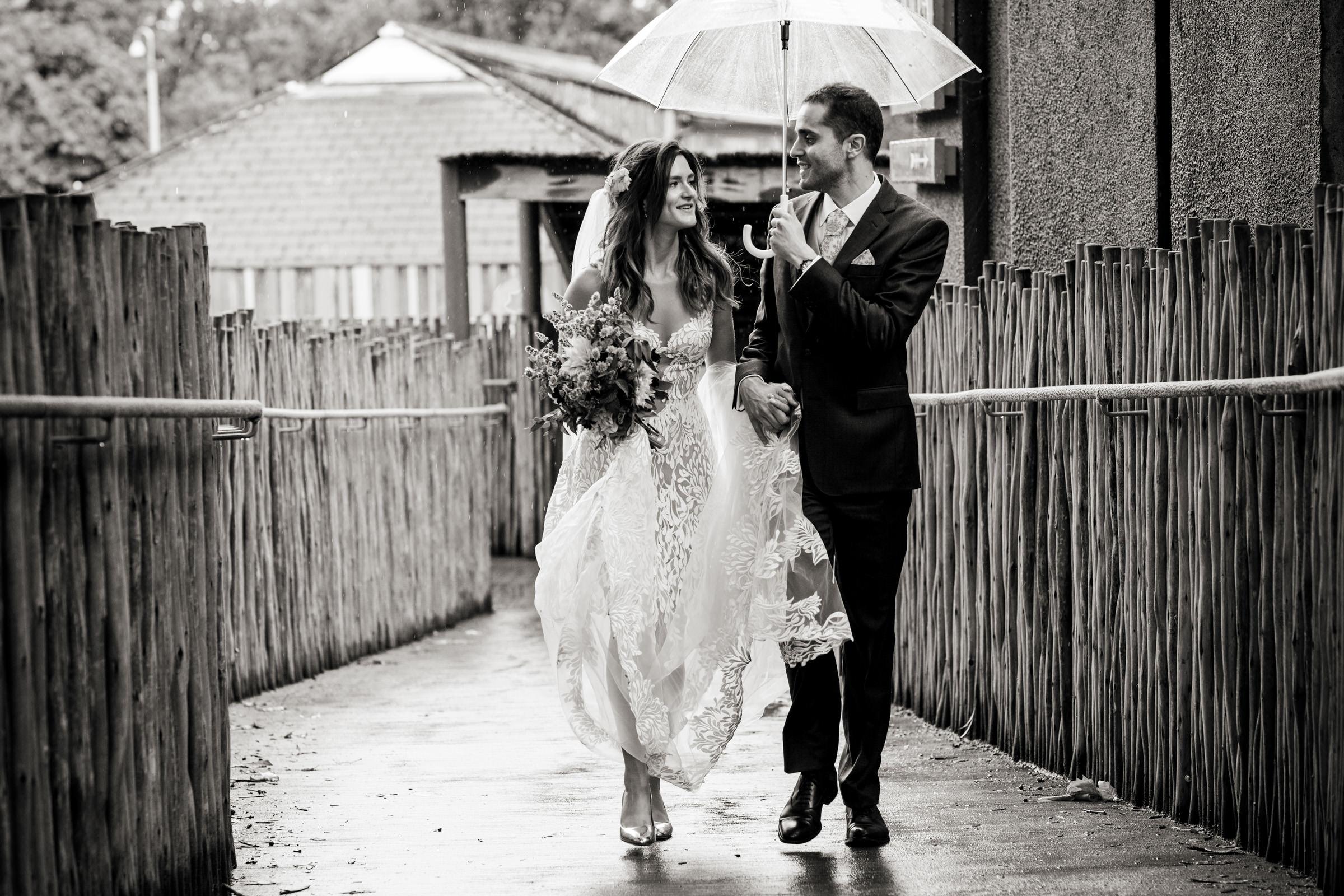 London Zoo Wedding Photography 028.jpg