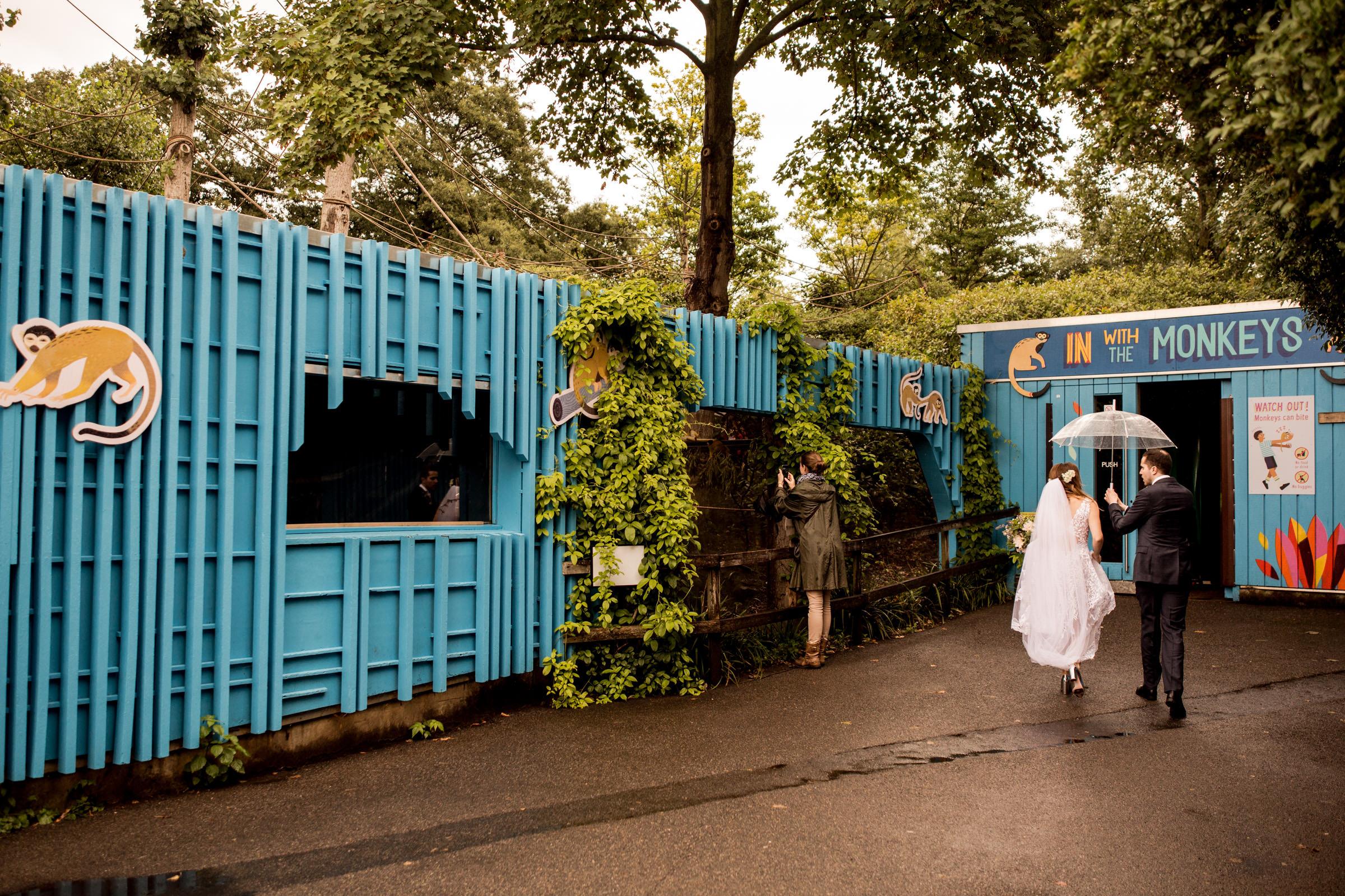 London Zoo Wedding Photography 027.jpg