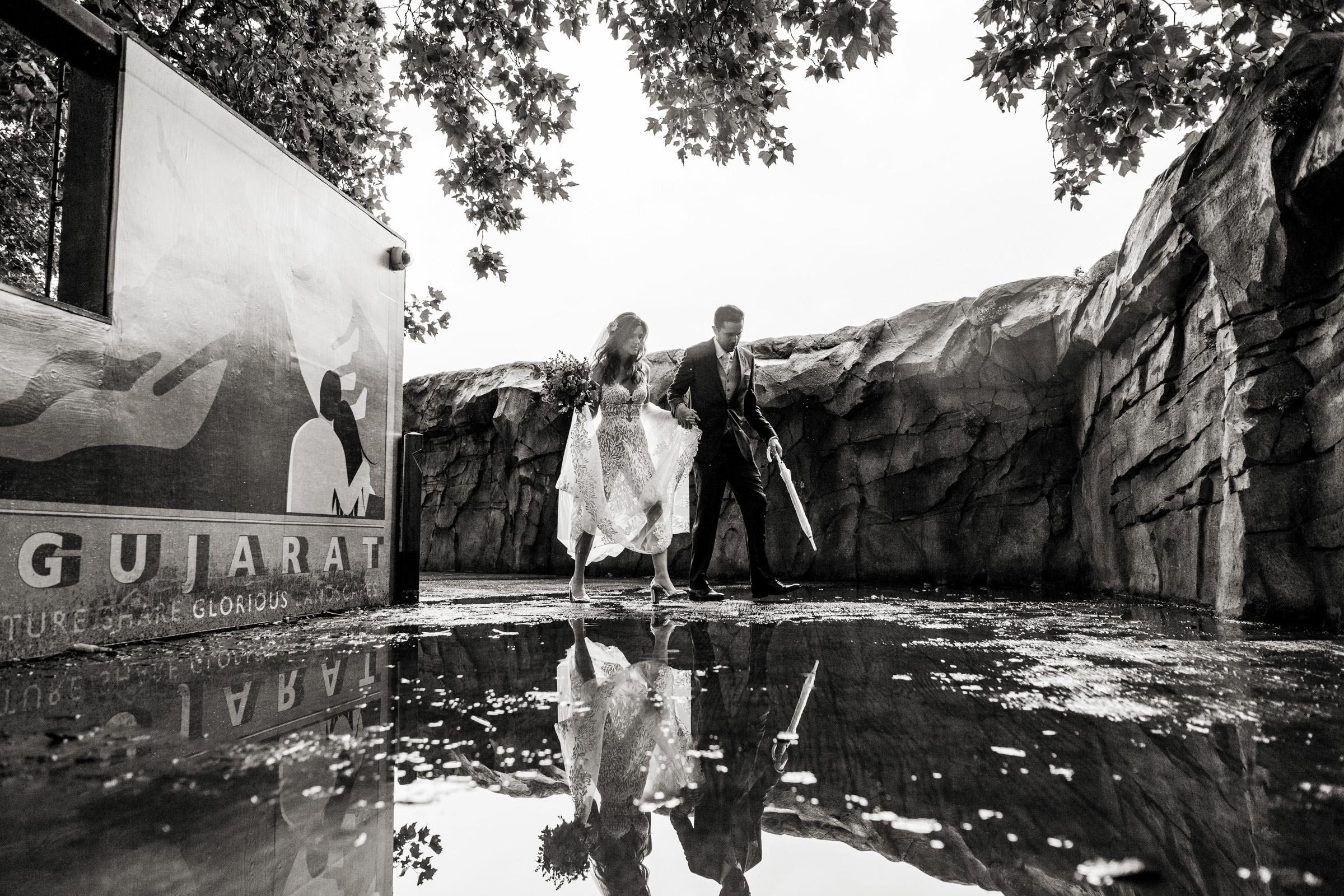 London Zoo Wedding Photography 029.jpg