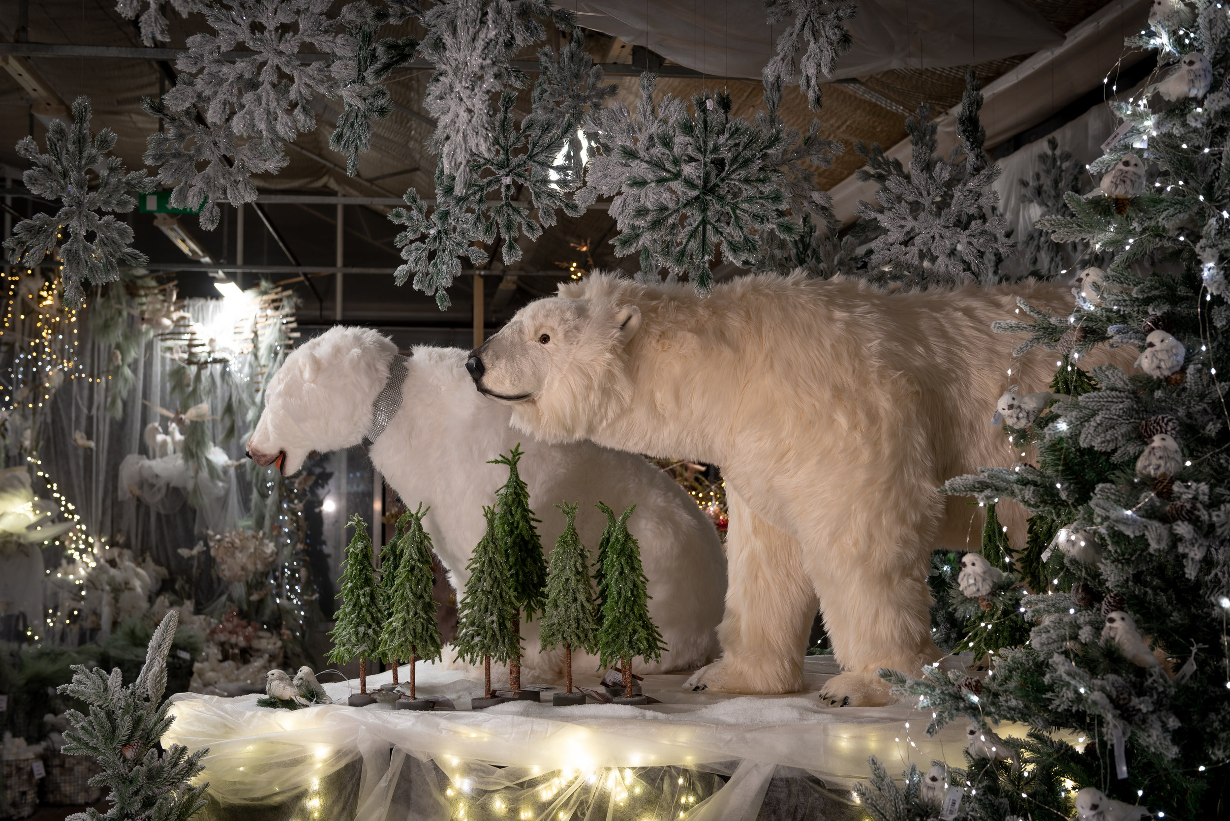 Åsbyhemochträdgård-isbjörnar 2018.jpg