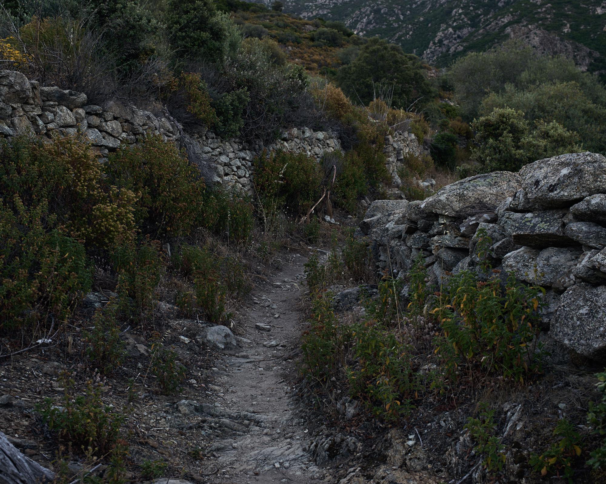 Paths 8.jpg