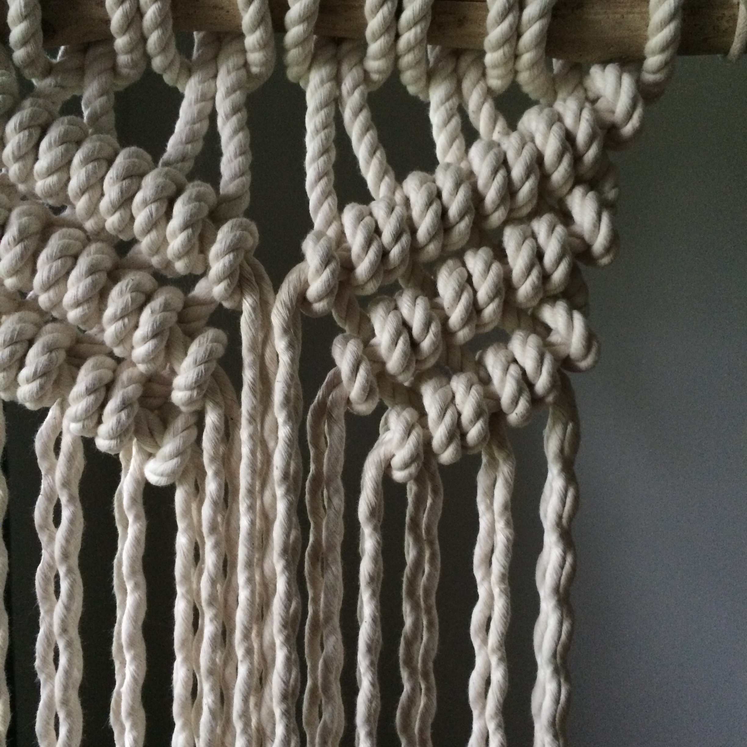 macrame wall hanging house sparrow nesting