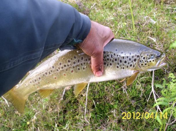 fishing club glasgow scotland.png