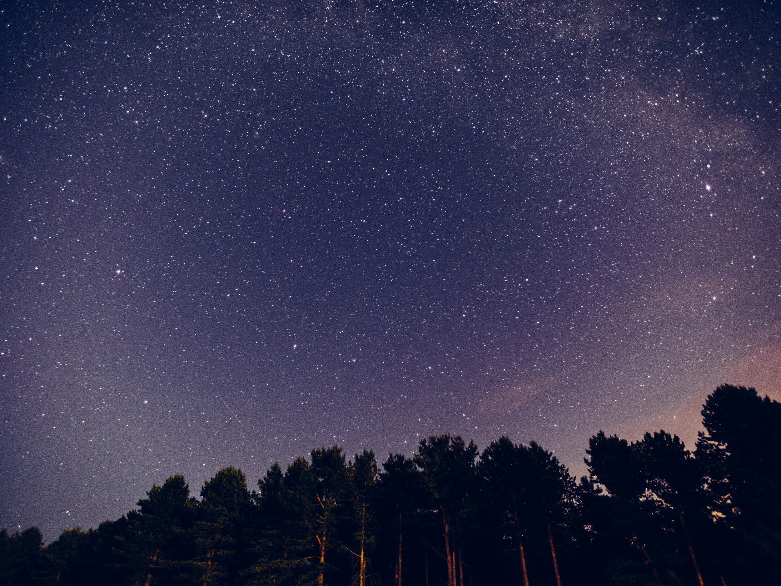 Shooting above the trees and a touch of milky way.