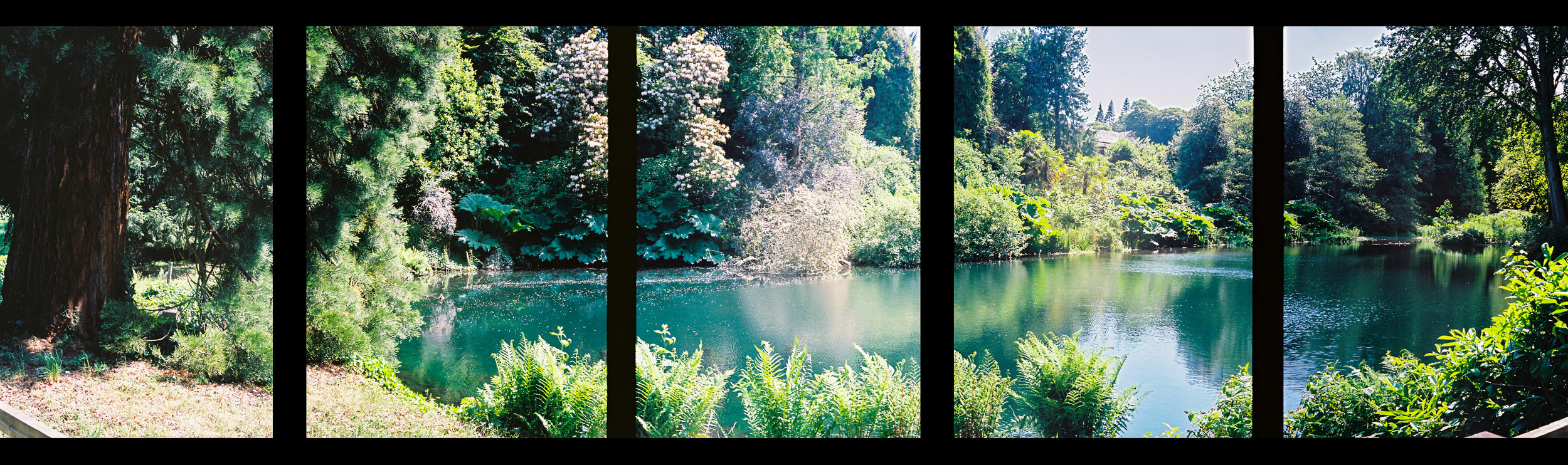 Berries Den Pond Panorama, shot on Olympus Pen D3