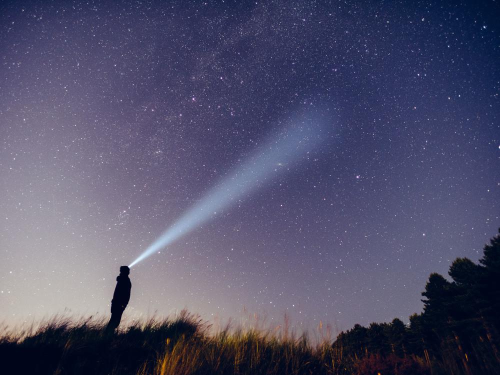 Perseid Meteor -