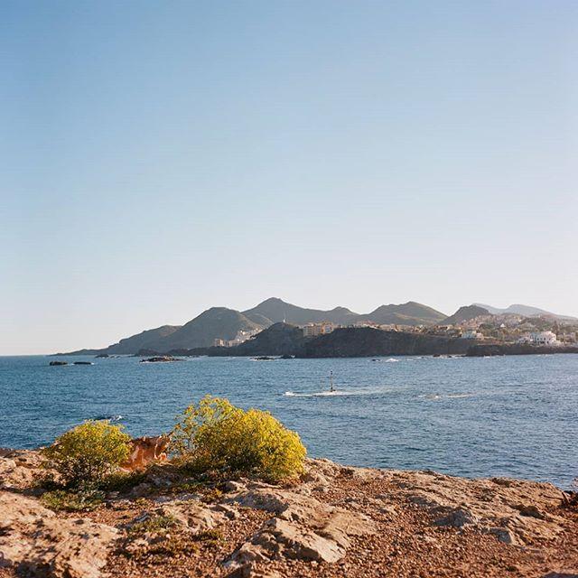 Mediterranean  Rolleicord VB / Ektar 100  #ektar100 #kodakprofessional  #rolleicord