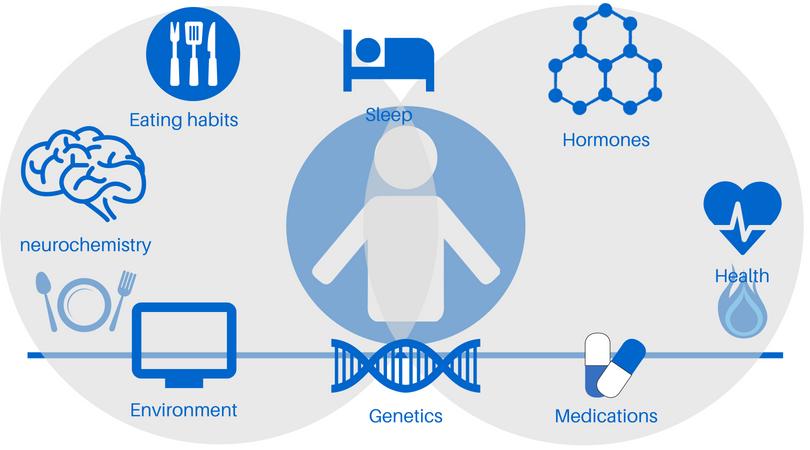Genetics.png