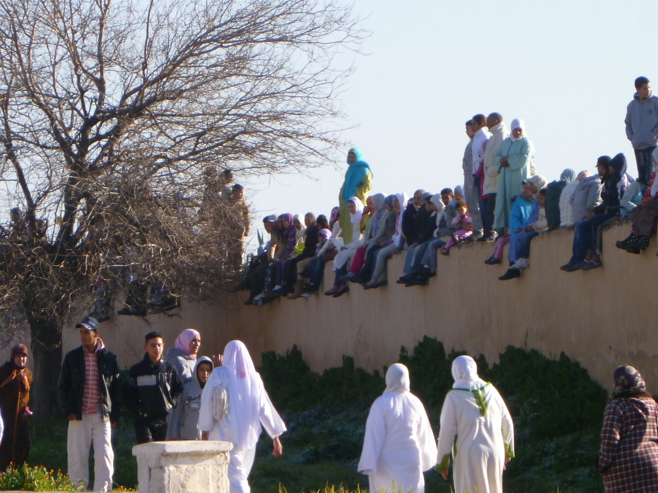 Pilgrims come fromall over Morocco to honor Sheik Al-Kamal during the MIloud festival in Meknes.