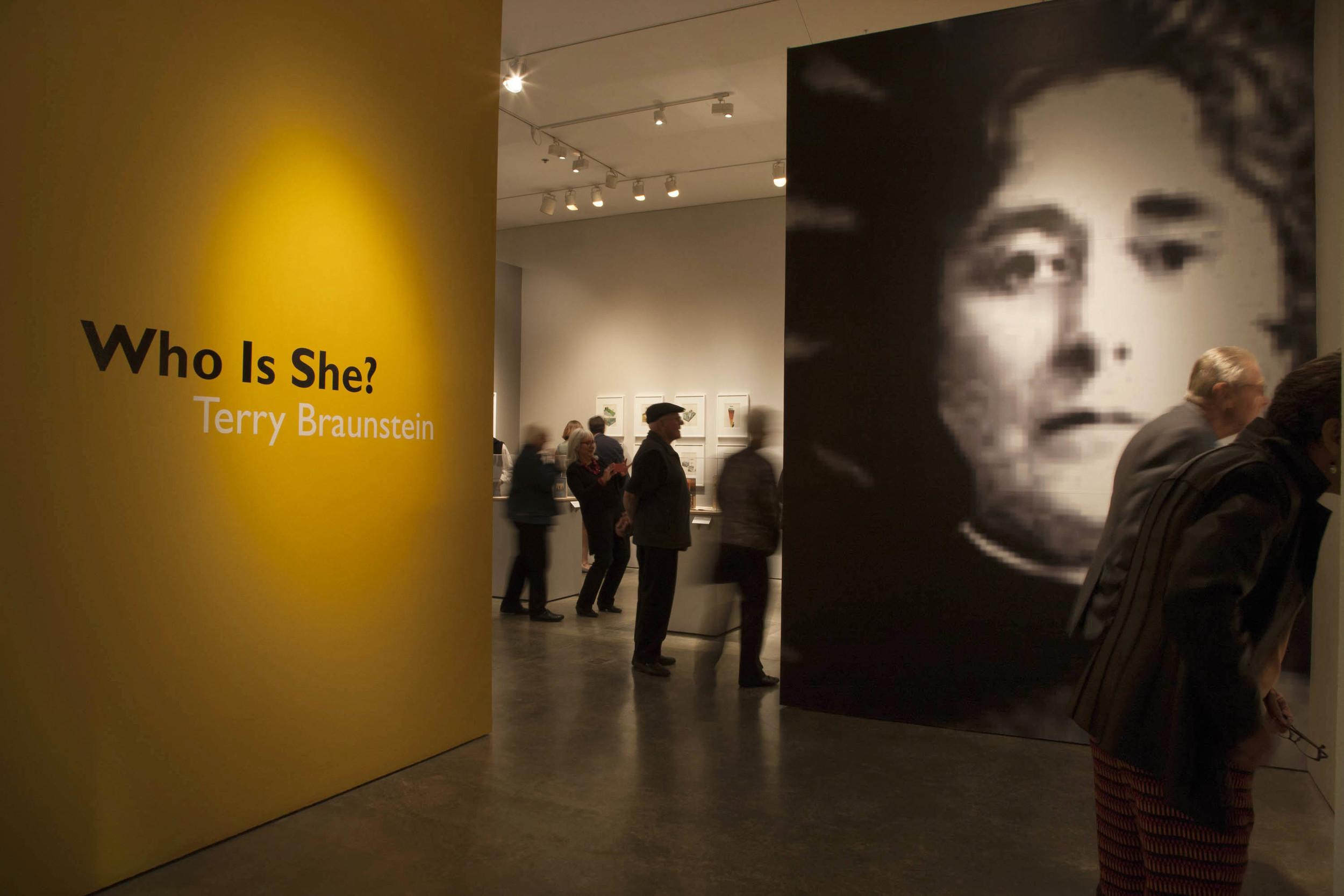 Terry Braunstein exhibit 01.JPG
