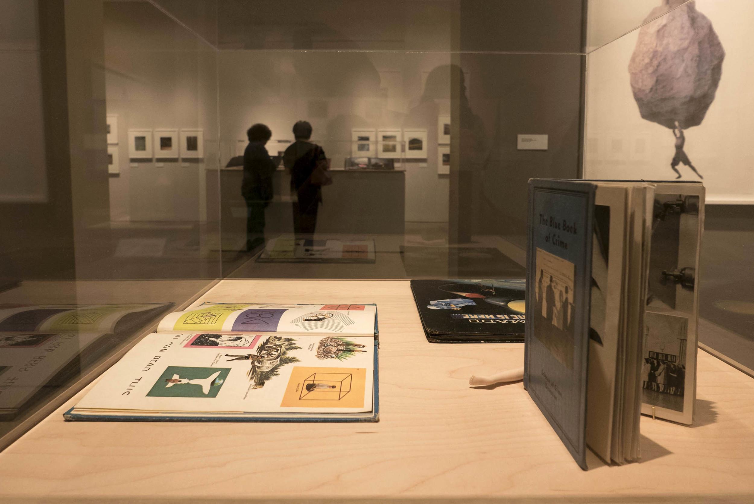 Terry Braunstein exhibit 19.JPG