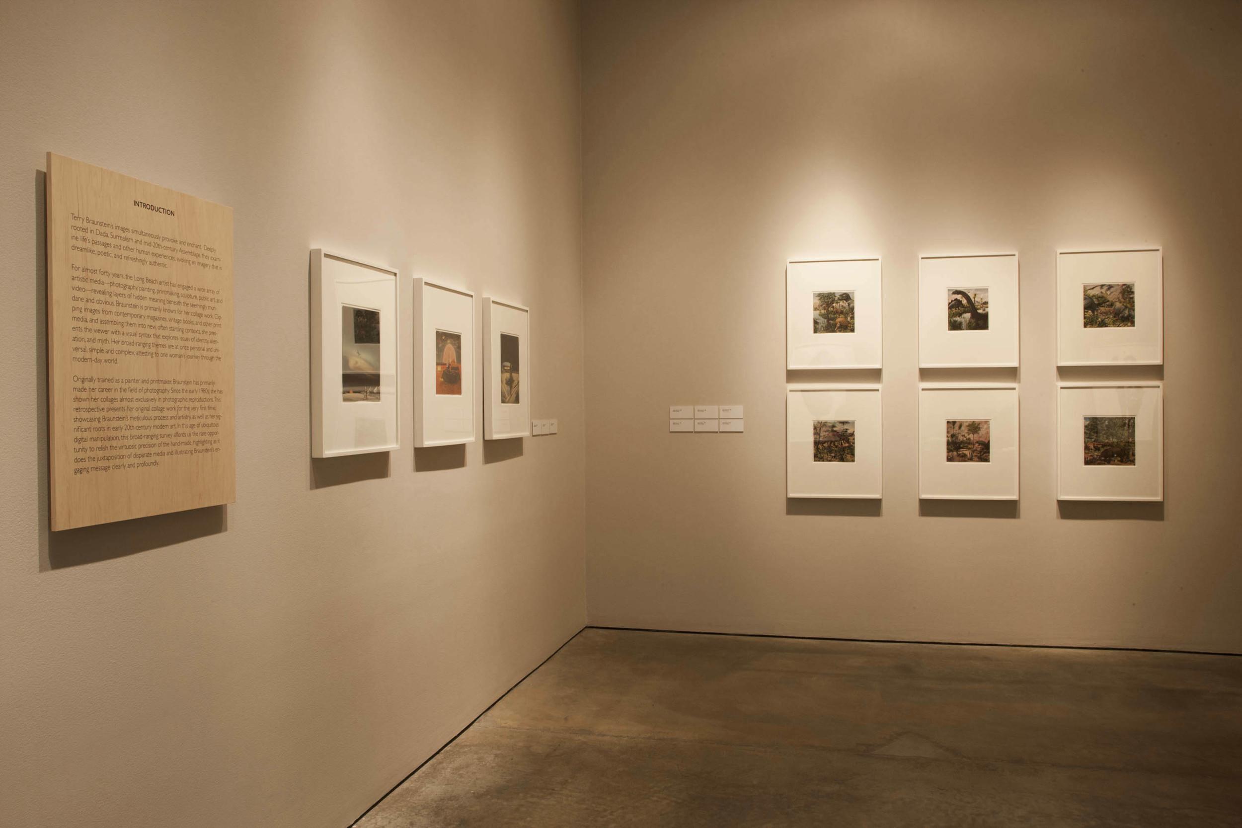 Terry Braunstein exhibit 13.JPG