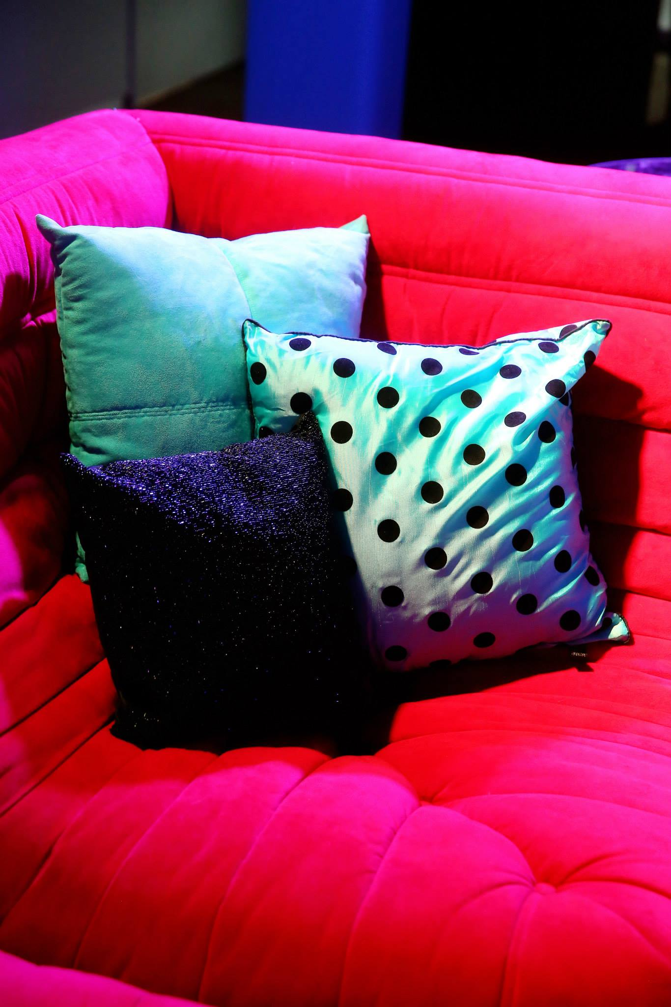 VAI Van Andel Institute Polka Dot Pillows