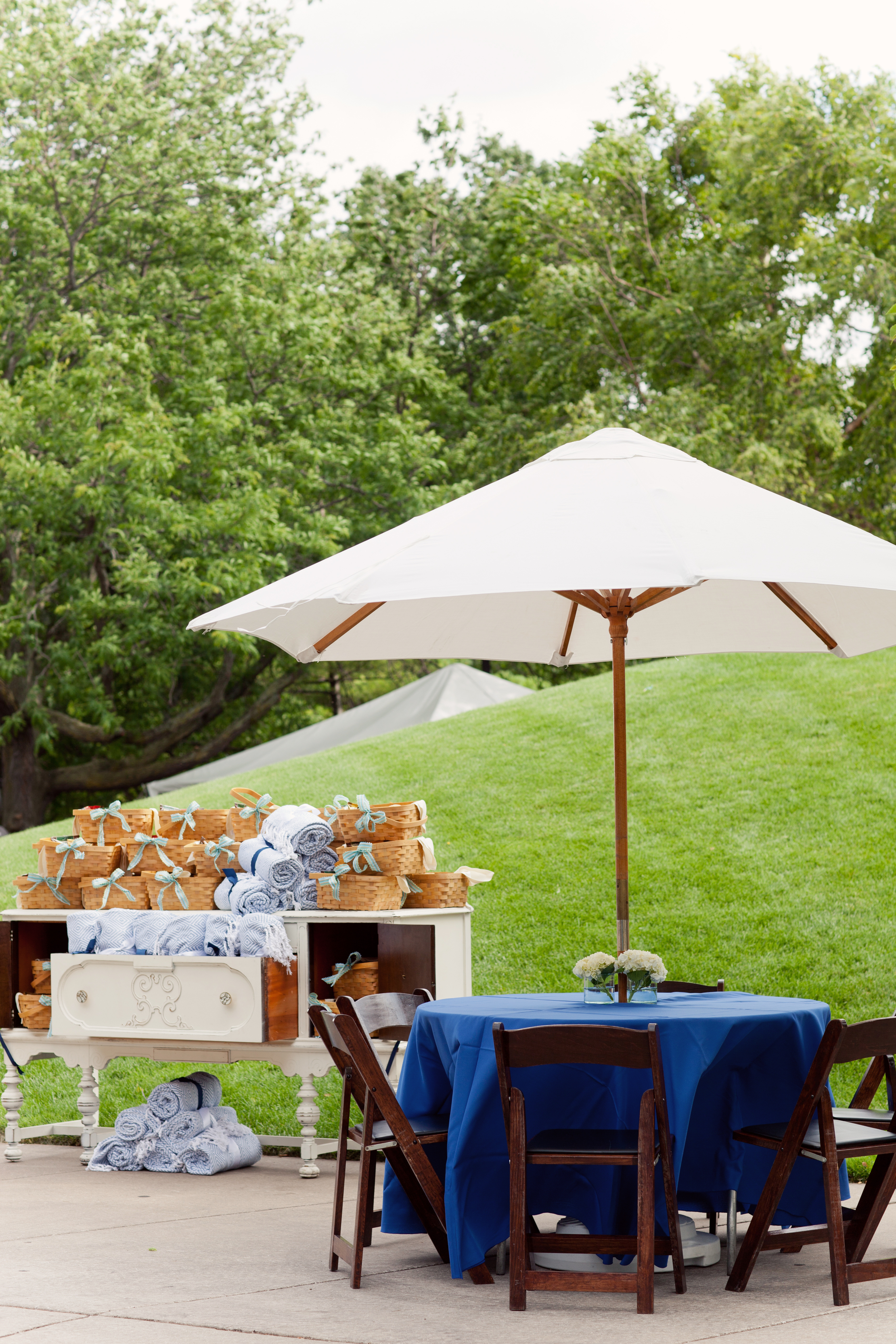 Grand Rapids, Michigan Park Event with Vintage Rental Furniture