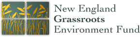 NEGEF logo.png