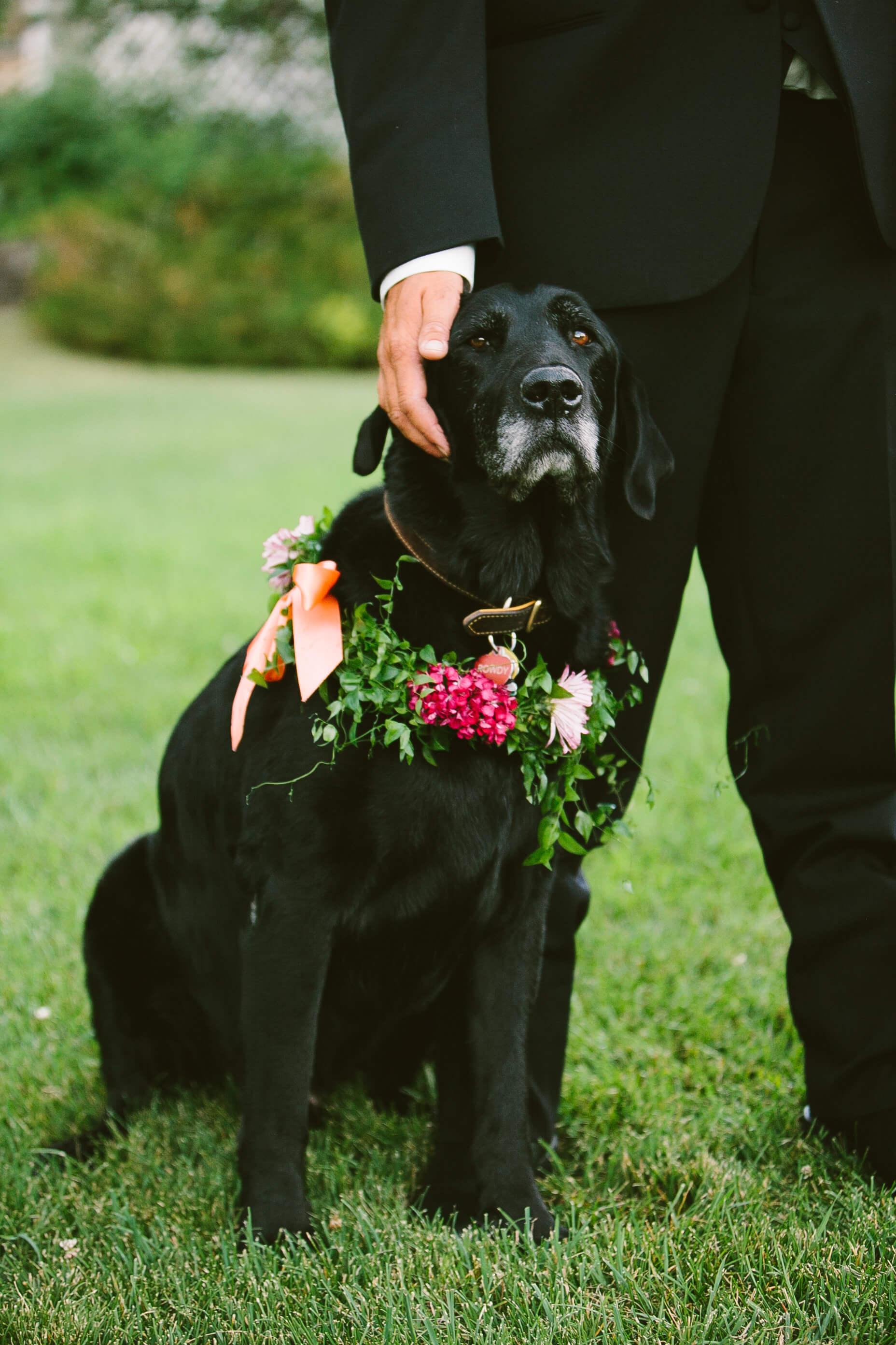 engle-olson-fran-ze-photo-montana-wedding-64.jpg