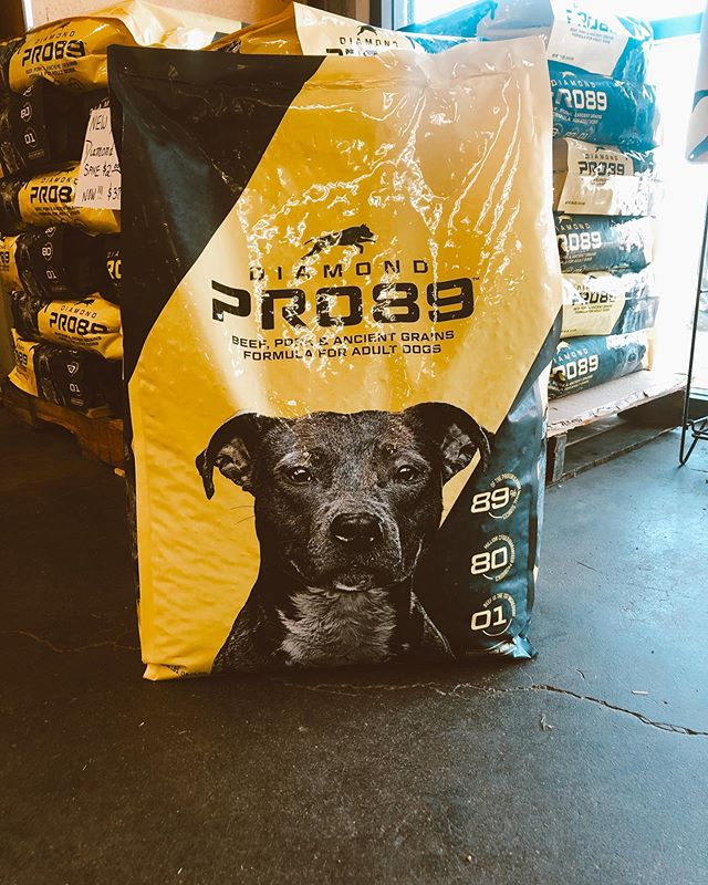 💥🔥🔥NEW PRODUCT ALERT!🔥🔥💥 We're super excited for Diamond Pet Foods new Performance💪🏽 Dog 🐶 food!! It's packed with protein, probiotics, antioxidants, omega fatty acids🥑, glucosamine/chondroitin, ancient grains and beef is the #1 ingredient 🐮💯 AND 89% of the protein is from animal sources 🐷🐔🐮 Plus, for a limited time, save $2.00💸 off per bag while supplies last!!😍