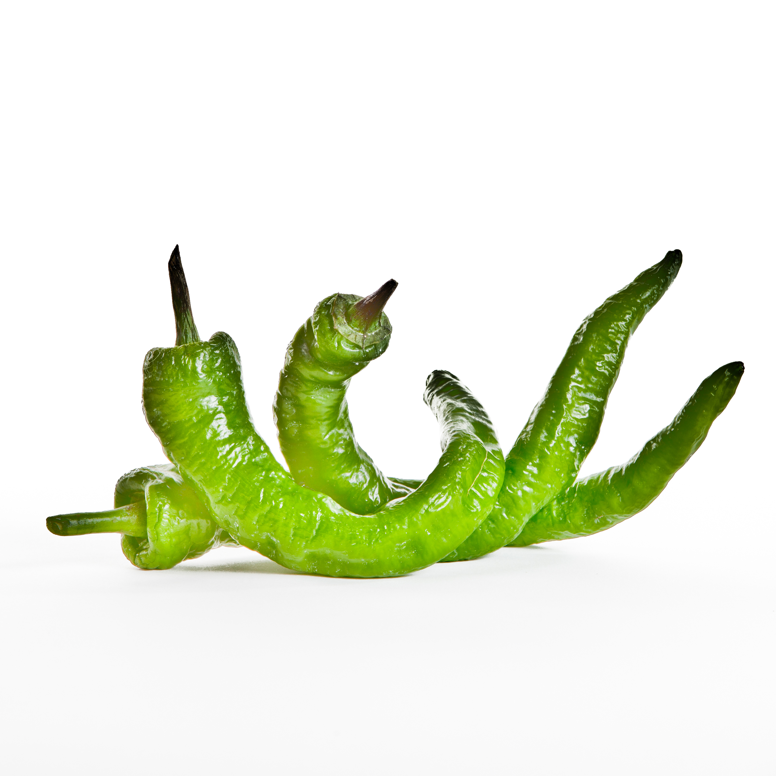 Pepper Final -5.jpg