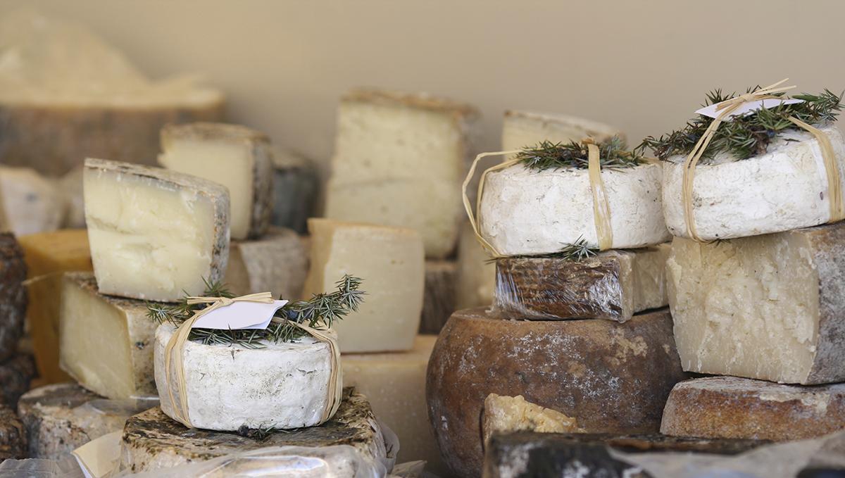 bella-terra-cheese-addiction