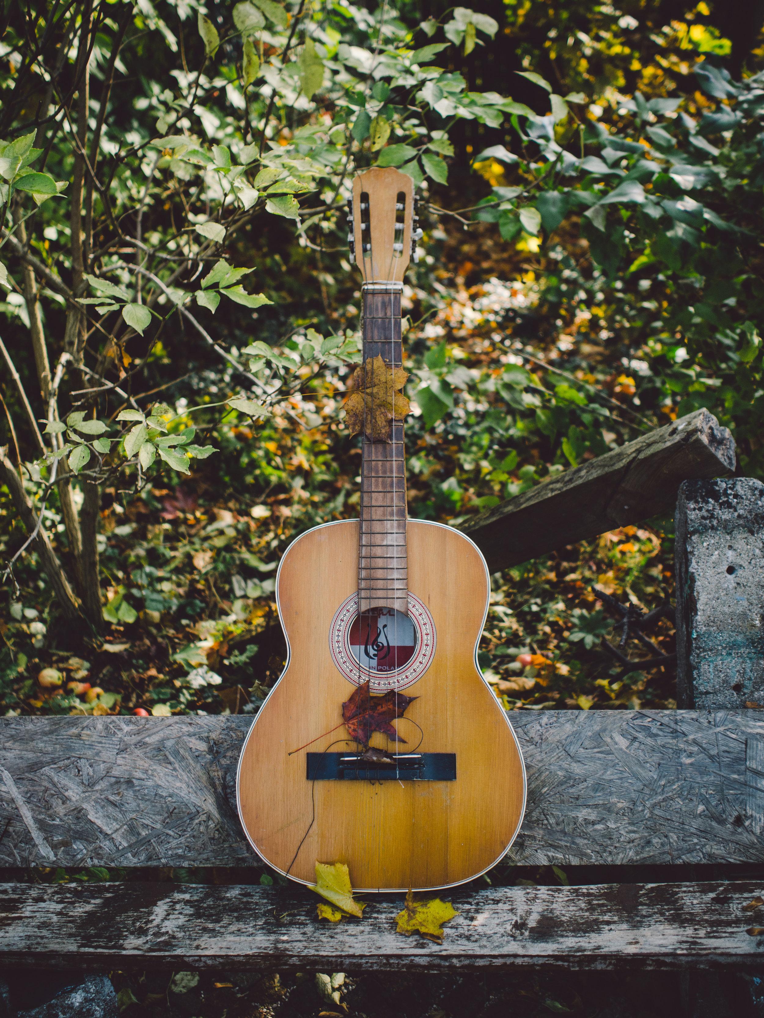 music bella terra.jpg