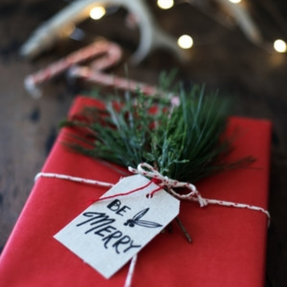 Bella Terra Christmas Present