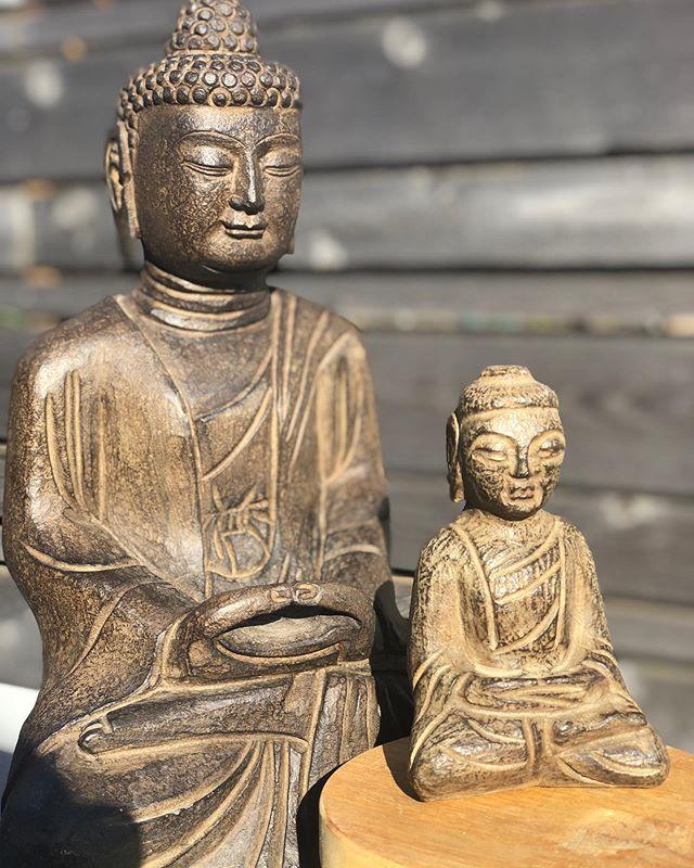 autumn light buddha buddies #statuary #october #finnesterre #manzanitabeach