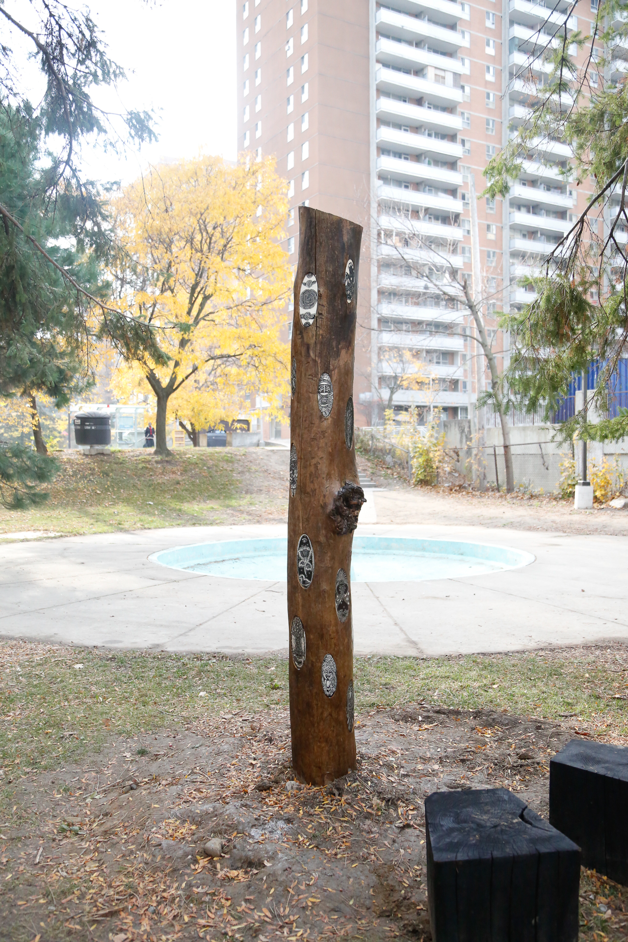 Mabelle Park Nov 5 2015-3629.jpg