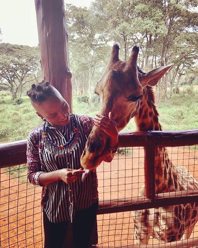 Met a new friend today ❤️🦒 #kenya  #giraffecenter  #blacktravelfeed #travelabroad  #teachabroad #serviceabroad  #volunteer  #africa  #outreach  #humitarian  #blacktravelmovement