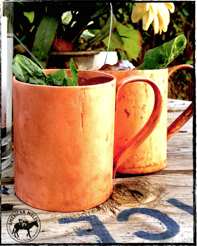Thank you Danielle Morrison of AZ for sending this shot of her cold mule backyard pour. Cheers!