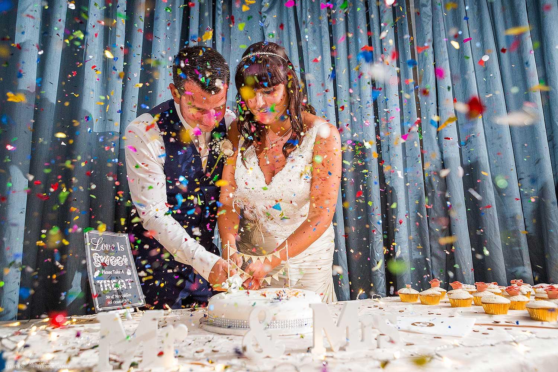 Wedding cake cutting at the wedding reception. Photo by Elliot Nichol Photography.