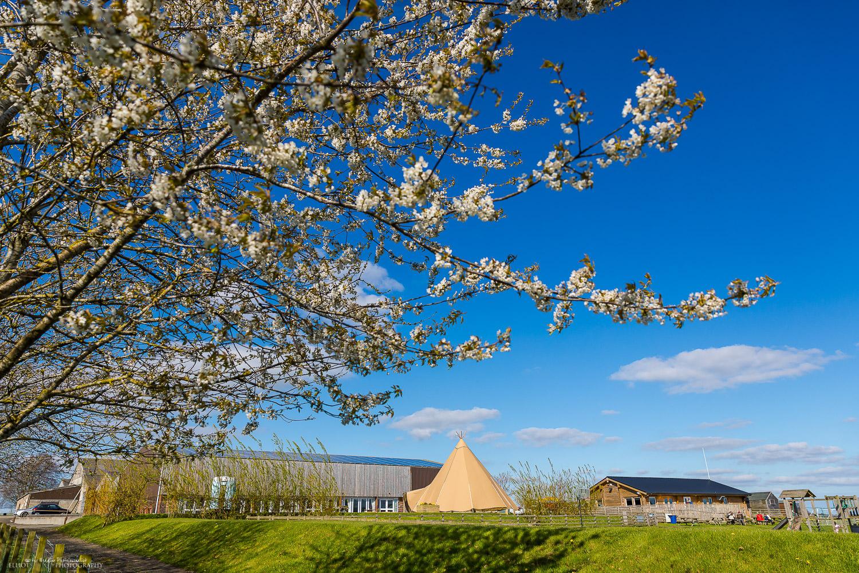 Vallum Farm, Newcastle Upon Tyne. Photo by Wedding and Engagement photographer Elliot Nichol.