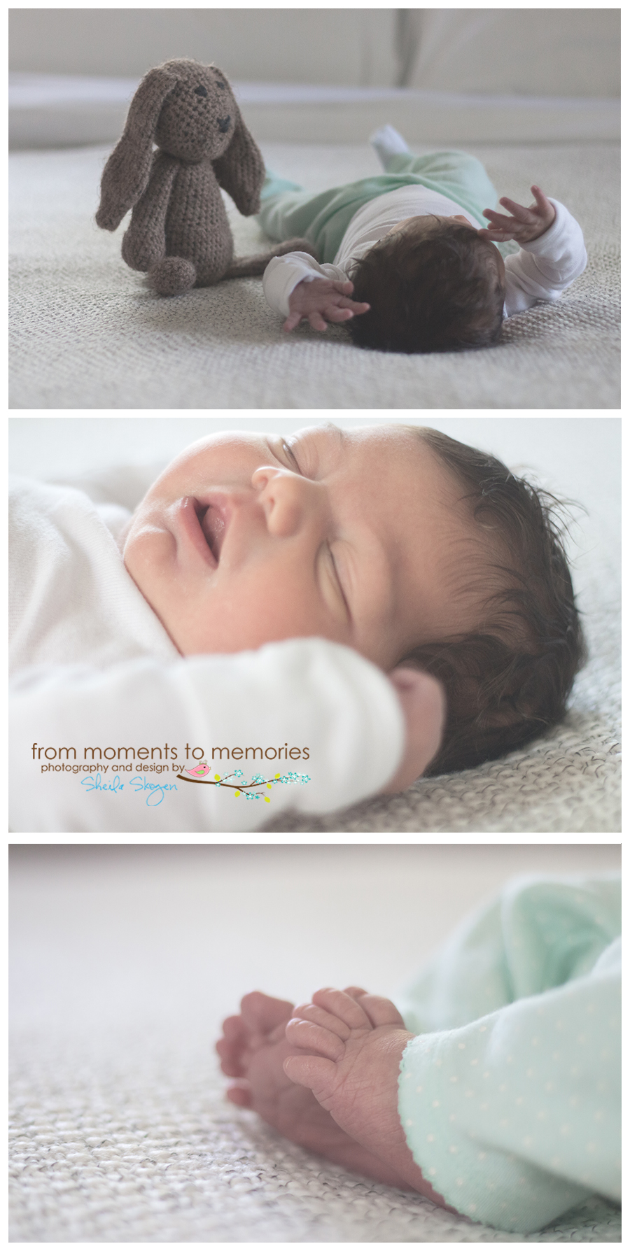 newborn photographer in the twin cities