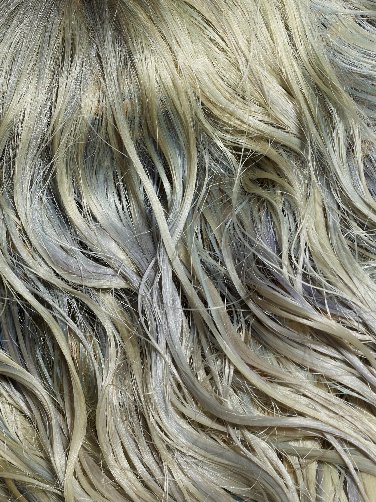 Beauty Papers wet hair38735.jpg