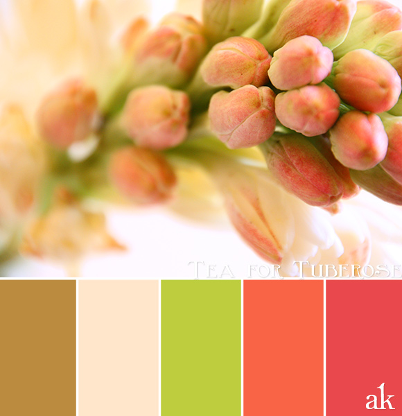 a tuberose-inspired color palette // gold, blush, green, orange, pink