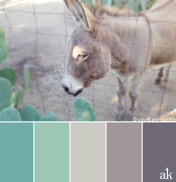 a donkey-inspired color palette // cactus green, beige, gray with purple undertones