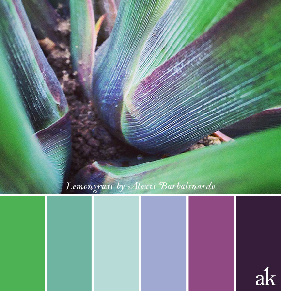 a lemongrass-inspired color palette // grass green, sea green, cool mint, lavender, violet, purple // photo by Alexis Barbalinardo