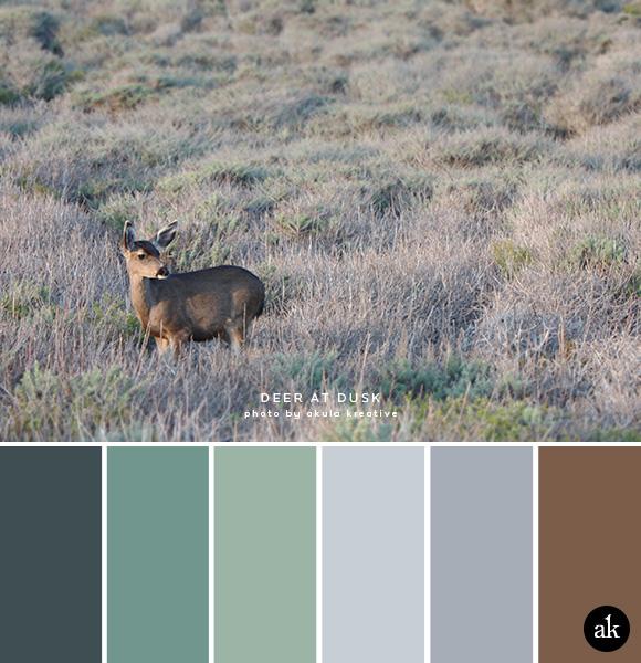 a deer-inspired color palette