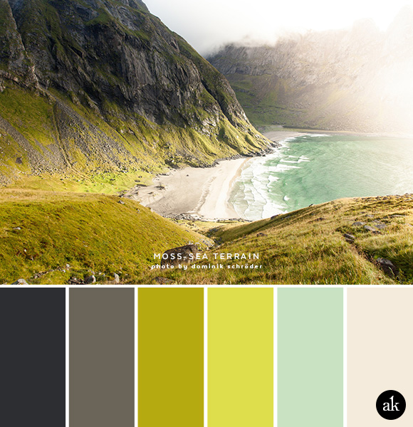 a mossy-coast-inspired color palette // slate gray, moss green, chartreuse, seaglass, sand