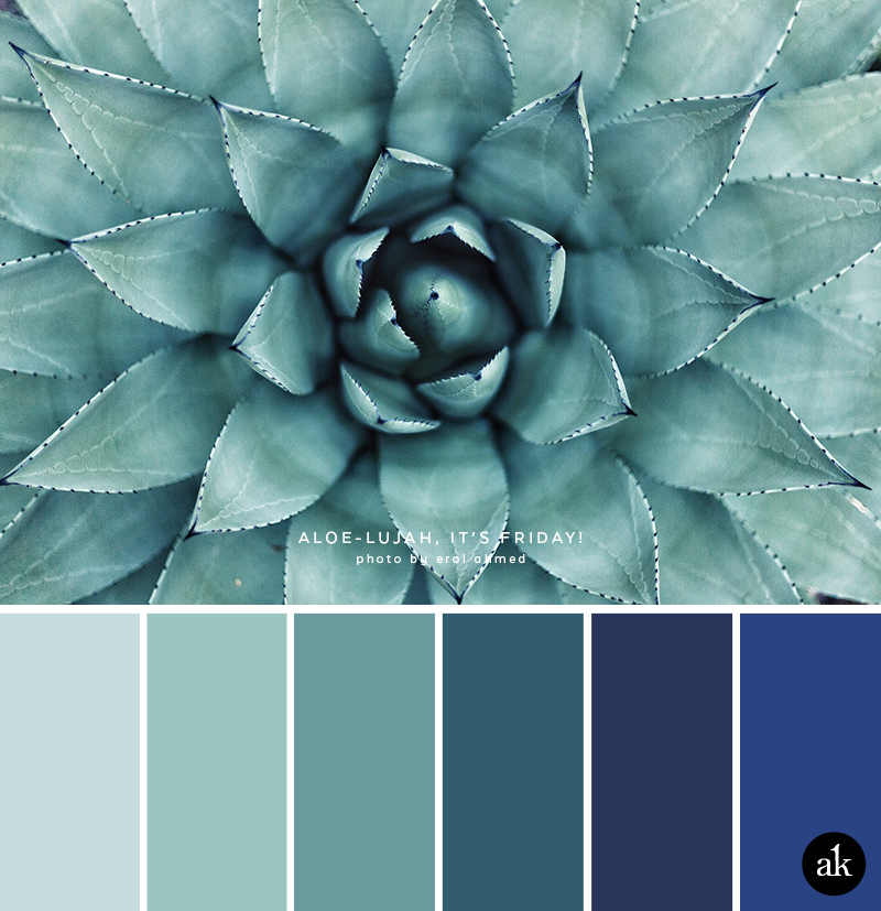 an aloe-inspired color palette // greens, blues