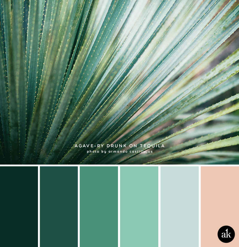 an agave-inspired color palette // green, blue, peach
