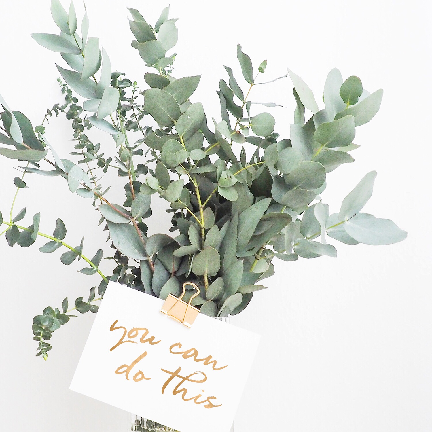 you can do this | Social Media Freebie | Akula Kreative (photo by Helena Hertz)