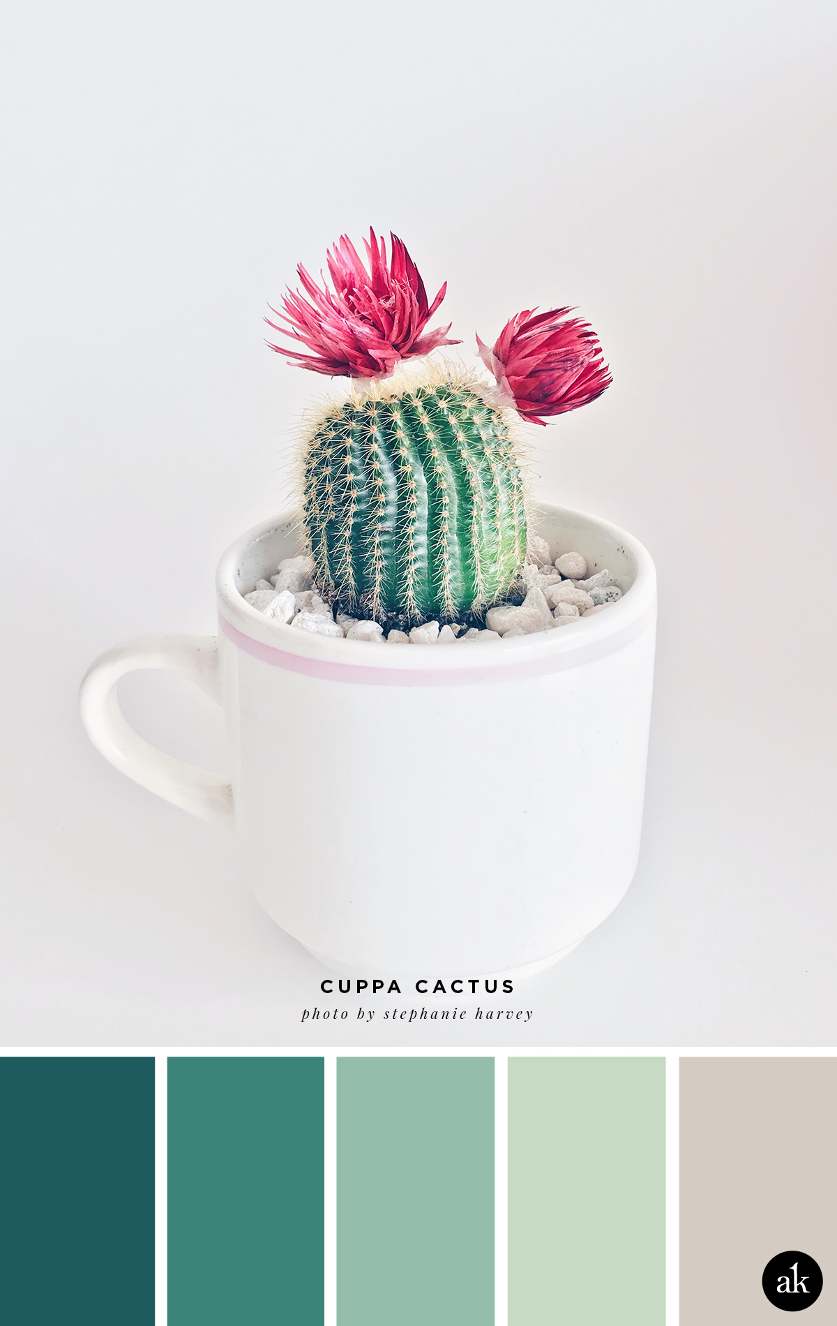 a cuppa-cactus-inspired color palette | blue-green, green, gray