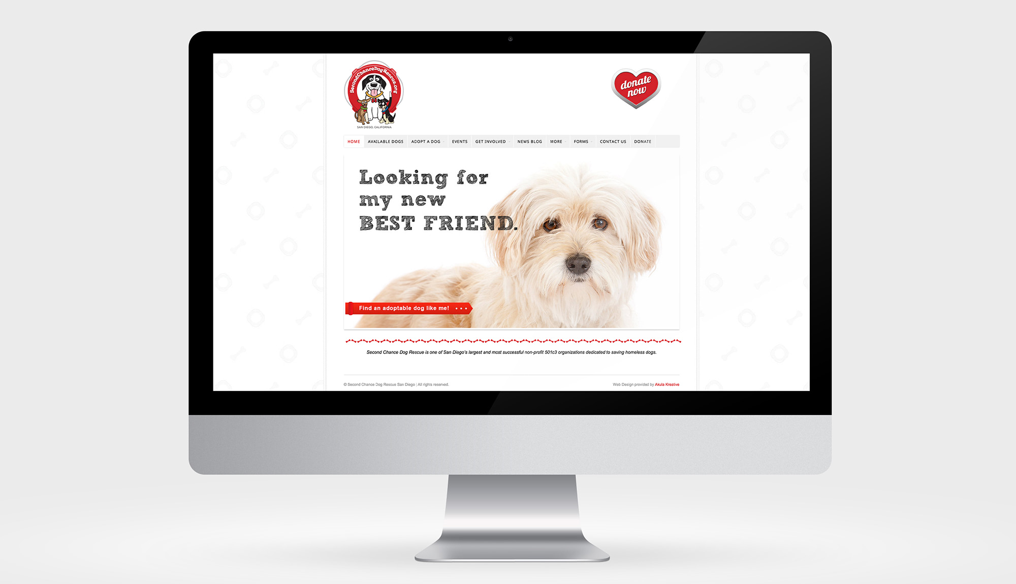 Custom Web Design for Dog Rescue | Akula Kreative
