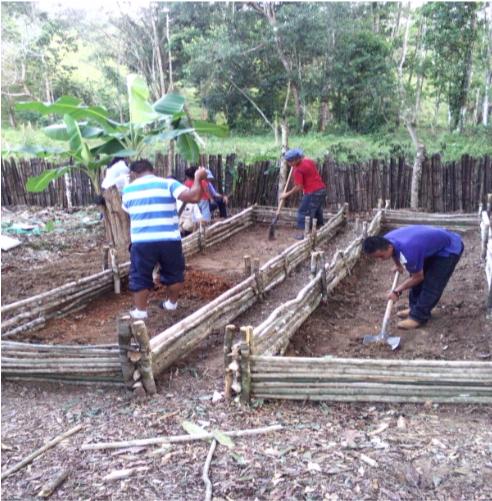 Estudiantes de duodécimo grado en proceso de construcción de semillero para recatar las especies vegetales en peligro de extinción en la comunidad de Rio Chiquito, Esparta.