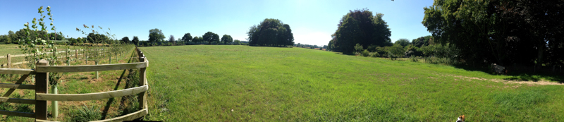 Pano 15 Acre from gate.jpg