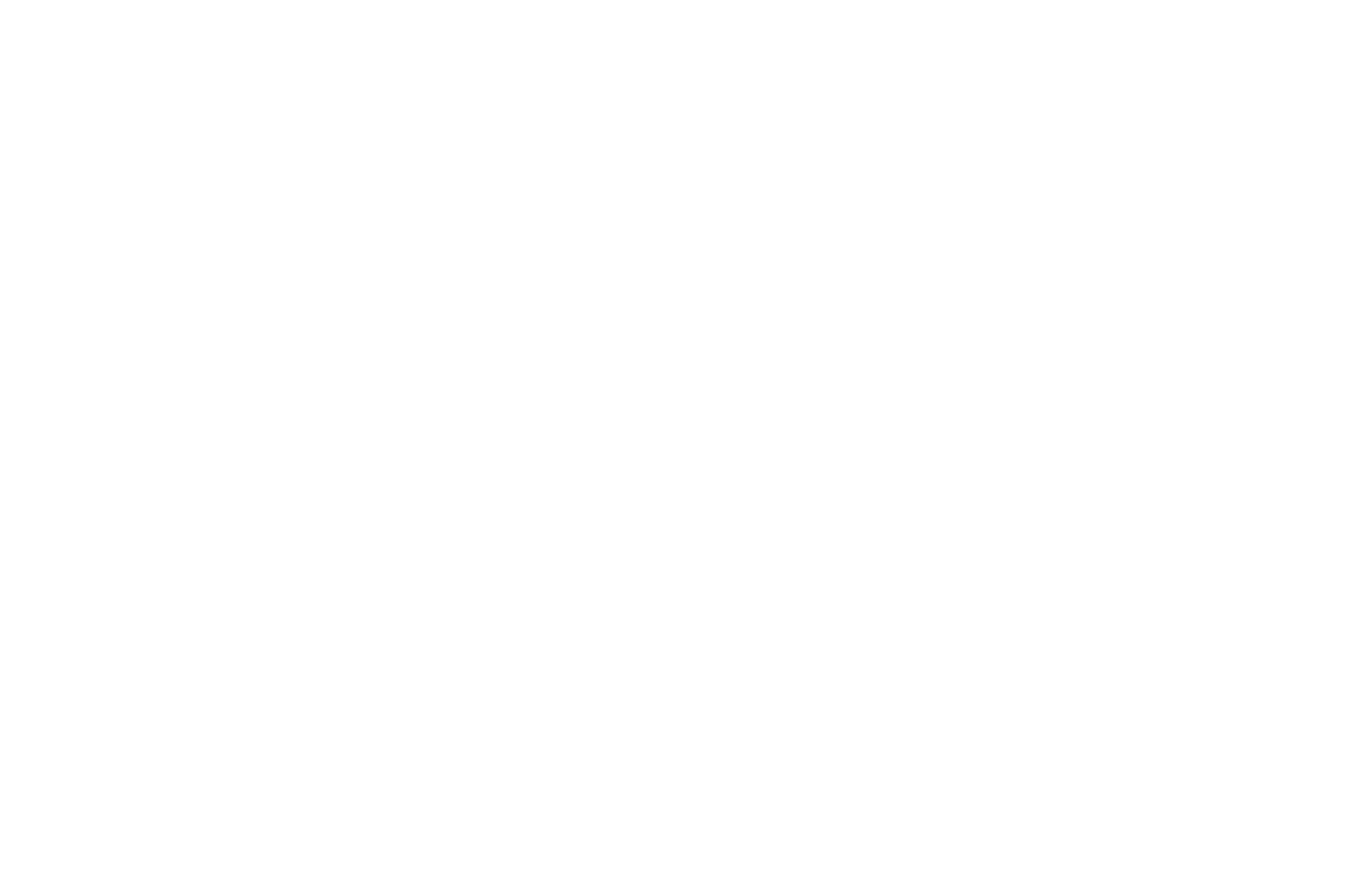 OFFICIAL SELECTION - Short Cine Fest - 2019.png