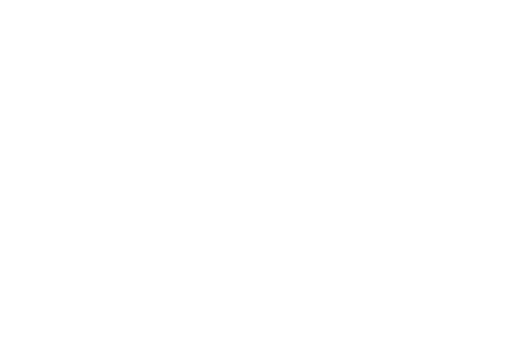 OFFICIAL SELECTION - Red Cedar Film Festival - 2019.png