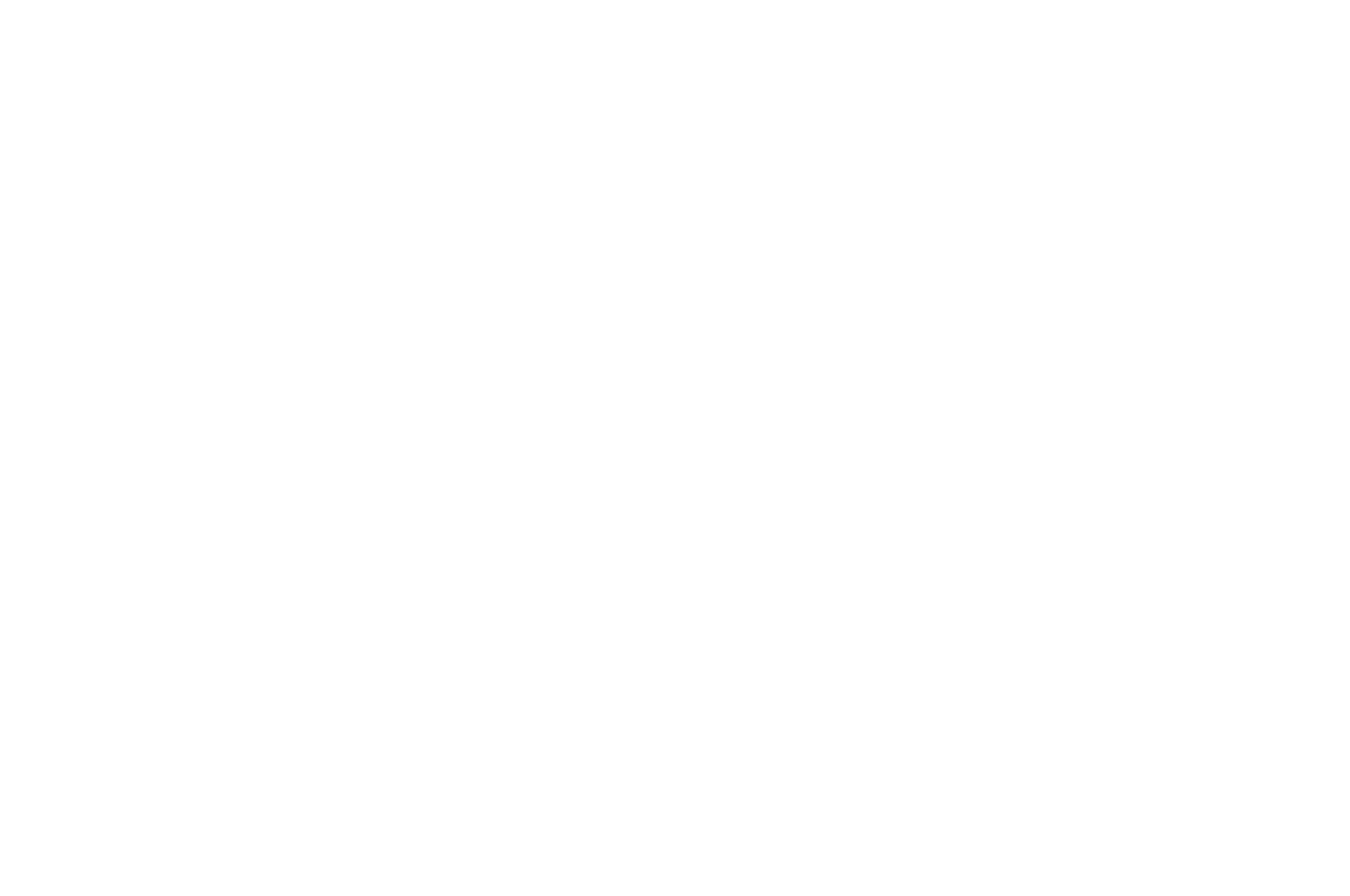 OFFICIAL SELECTION - Prairie State Film Fest - 2019.png