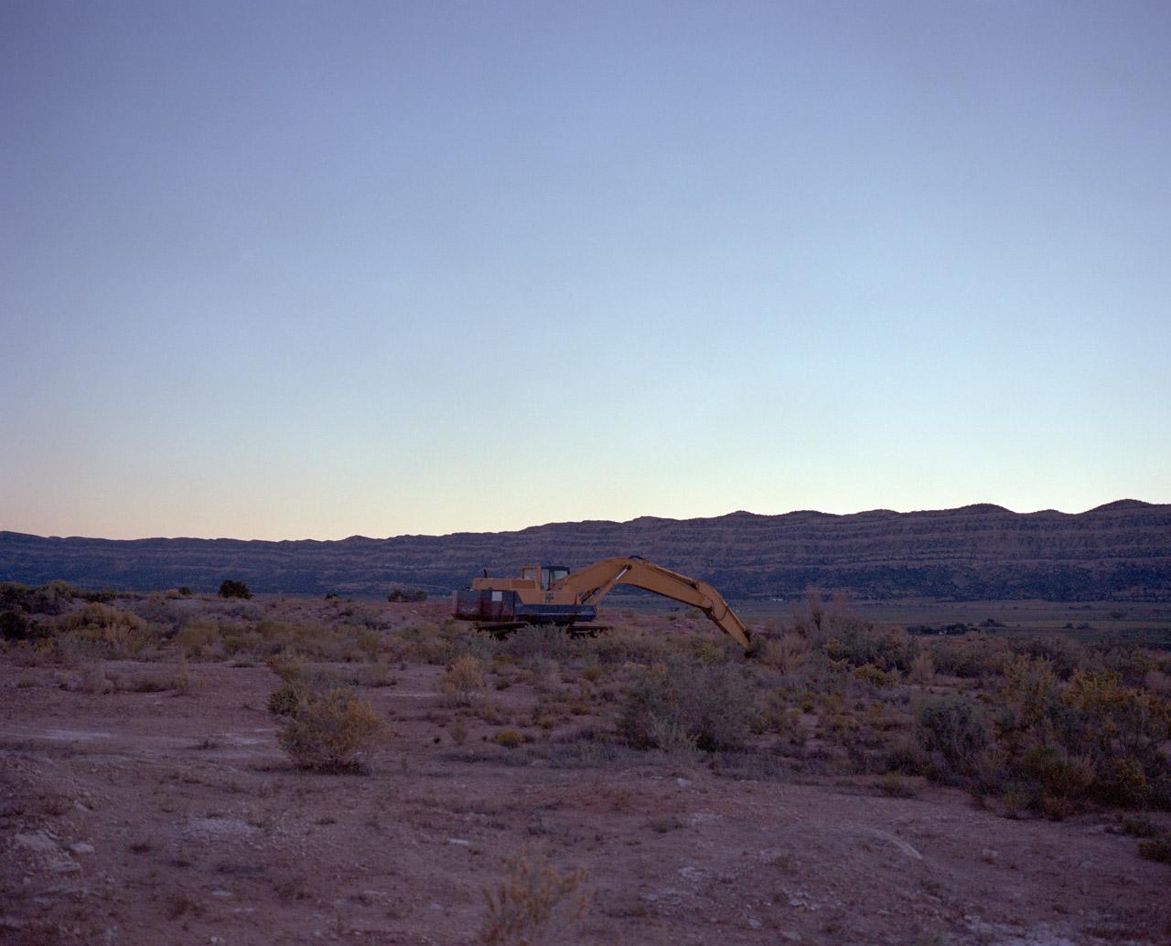 Crane at dusk outside of Escalante Utah. October, 2013.