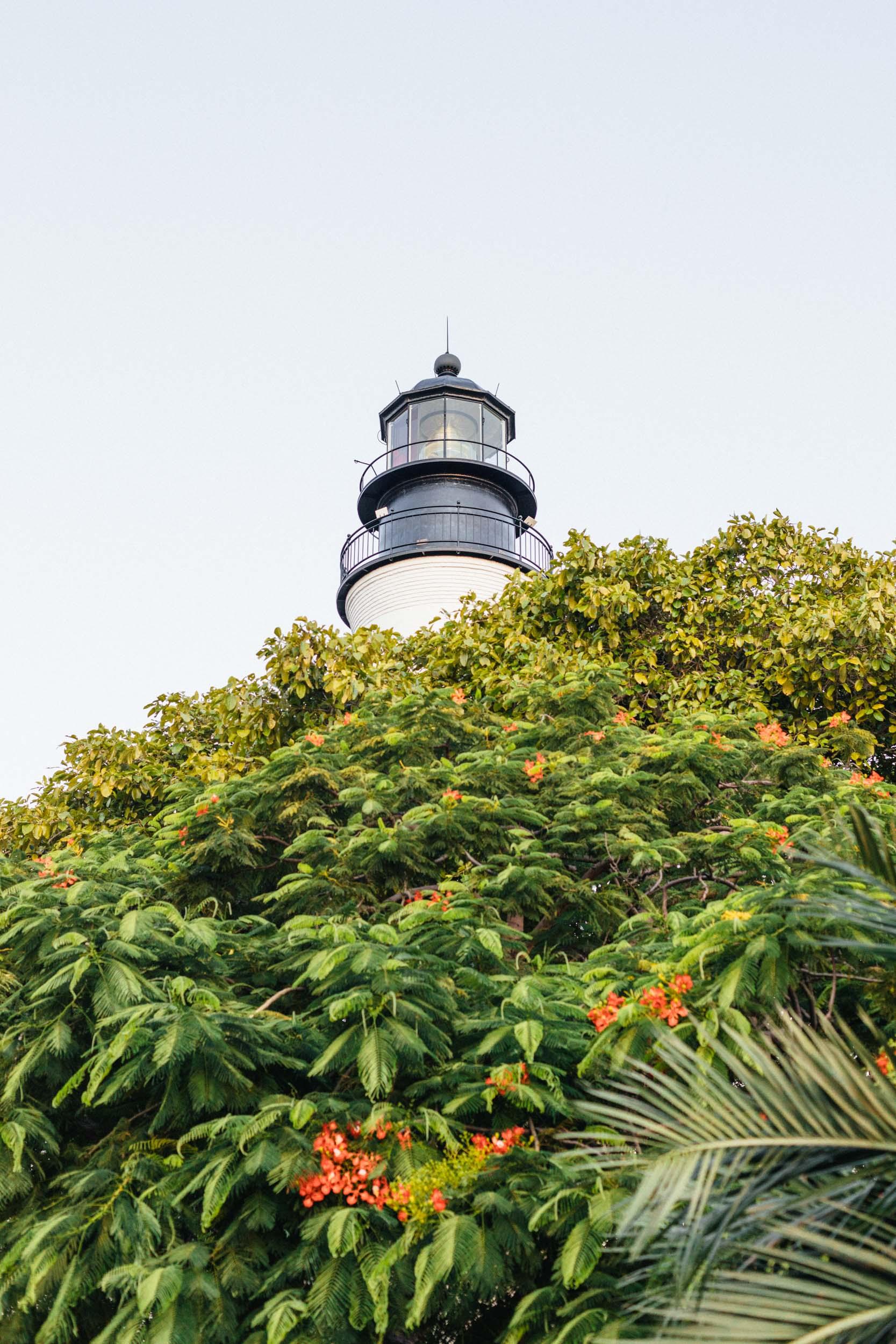 Florida Keys (3 of 16).jpg